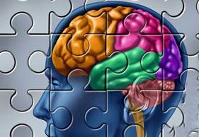 تقویت حافظه بلند مدت, تقویت حافظه در طب سنتی, تقویت حافظه کودکان,
