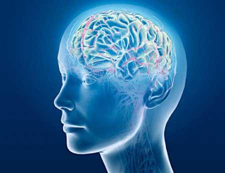 تقویت حافظه,تقویت مغز,ورزش و تقویت حافظه