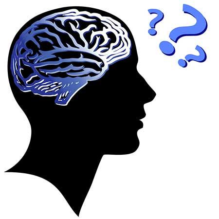 تقویت حافظه بلند مدت,تقویت حافظه کوتاه مدت,