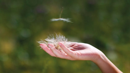 کائنات و آرزوها,چگونه آرامش روحی پیدا کنیم