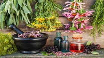 درمان بی خوابی با داروهای گیاهی,درمان بی خوابی شبانه