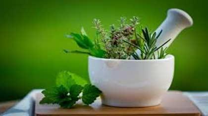 درمان بی خوابی با داروهای گیاهی